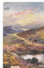 Devon Postcard - Dartmoor - Near Princetown     ZZ3241