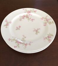 Haviland Limoges Sch.29A Pink Flowers Smooth Set of 2 Dinner Plates