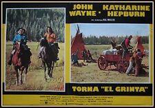 "fotobusta TORNA ""EL GRINTA"" JOHN WAYNE KATHARINE HEPBURN"