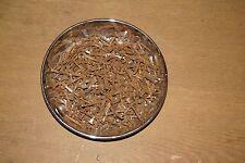 Gebrauchte Hufnägel,  alte Nägel von Hufeisen 0,8 kg