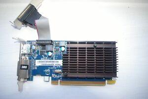 SAPPHIRE ATI AMD RADEON HD5450 CAICOS 1GB PCI-EX16 HDMI/DVI-D/VGA