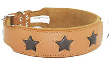 Tan Staffy Dog Collar With 6 Brown Stars To Fit 22 - 26 Inch Neck 2 Inch Wide