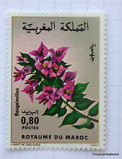MAROC Yt 988 Timbre neuf  Flore marocaine - Fleurs, Bougainvillea