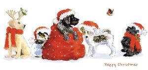 Rowans Hospice Charity Christmas Cards - Row of Dogs