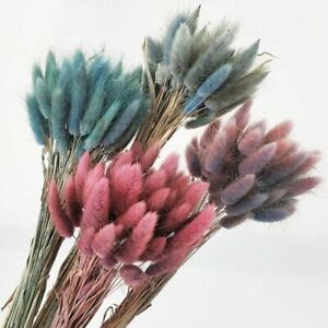 Natural Dried Bouquet Flowers Home Wedding Decoration Grass Party Bunch Pampas