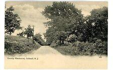 Caldwell NJ - COUNTRY ROAD SCENE - Postcard