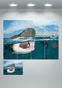Great White Shark Attack Wall Art Poster Print A3/A4 Sections or Giant 1 Piece