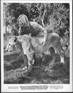 ~ Born Free Virginia McKenna Original 1960s Promo Photo