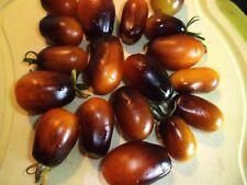 Indigo Pear Drops  violett-schwarz-gelb  NEUE SORTE Samen Sämereien Tomaten