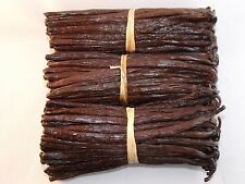 75 gousses de vanille Bourbon de Madagascar 13-15 cm dernière récolte