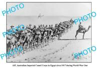 OLD LARGE PHOTO WWI AIF ANZACS IMPERIAL CAMEL CORPS 1917 EGYPT