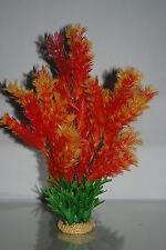 Plante d'aquarium LIMNOPHILA Flore orange avec lesté Socle de Pierre 38 cm