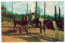 COWBOY Horses COWGIRL Corral SAGUARO American Airlines 1950's Vintage POSTCARD