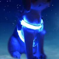 Best Dog Harness Cat Safety LED Flashing Light Leash Rope Belt Collar Vests I2H3
