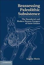 Reassessing Paleolithic Subsistence: The Neandertal And Modern Human Foragers...