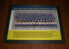 1981 PITT PANTHERS FOOTBALL TEAM FRAMED PRINT