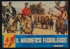 FOTOBUSTA, IL MAGNIFICO FUORILEGGE Best of the Badmen CABOT, WESTERN USA, POSTER
