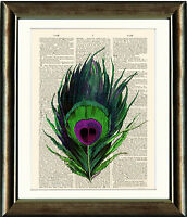 Old Antique Book page Art Print - Peacock Feather Dictionary Page Wall Art