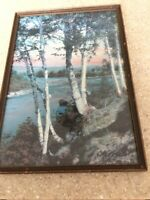 """CHARLES SAWYER HAND-COLORED PHOTOGRAPH """"MELODY"""".  Birch Trees On River"""