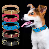 Soft Plain Leather Dog Collars Brass Buckle for Small Medium Dogs Jack Russell