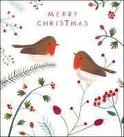 Pack of 5 Christmas Robins Samaritans Charity Christmas Cards Cello Packs