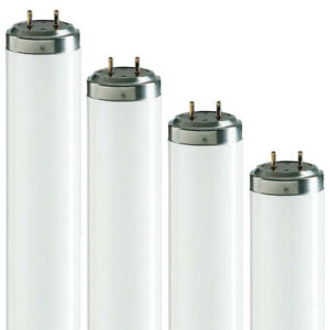 T12 Fluorescent Tubes available in: 2ft, 4ft, 6ft, 8ft/ 20w, 40w, 65w, 75w, 100w