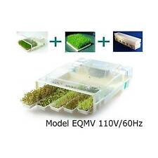 EASYGREEN SEED SPROUTS AND MICROGREEN SPROUTER - AUTOMATIC SPROUTING MACHINE