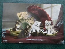 VINTAGE CAT POSTCARD - A CORNER OF THE DRAWING ROOM - CATS KITTENS