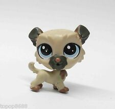 Littlest Pet Shop LPS  Collie DOG Child Boy Girl Figure
