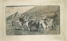 c1910 Western Pioneer Life Log Cabin Pack Horse Outfit RPPC Photo Postcard