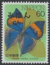 Specimen, Japan Sc1698 Insect, Butterfly, Kallima inachus