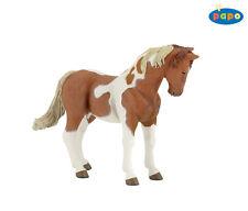 Z2)  PAPO 51094  Pinto Vollblut Stute Horse Pferd Pferde Hengst Tierfiguren