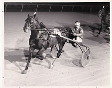 "LIBERTY BELL Park Harness Horse Race, ""Shane T. Hanover"" wins , 1984"