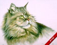 SIBERIAN LONG HAIR CAT HEAD ANIMAL PORTRAIT PAINTING CATS ART REAL CANVAS PRINT
