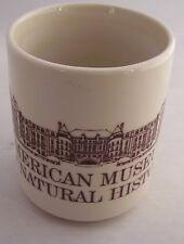 American Museum of Natural History Manhattan New York Building