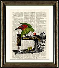 VECCHIO LIBRO pagina ART PRINT-PARROT per macchina da cucire dizionario vintage stampa pagina