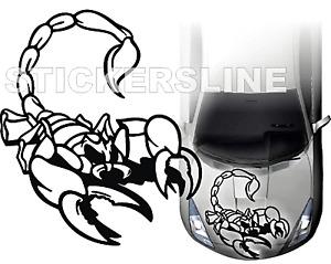 Adesivi auto tuning stickers decalcomanie SCORPION 2 Cofano