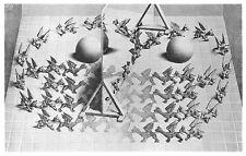 MC Escher Poster Kunstdruck Bild Zauberspiegel 38x58 cm Kostenloser Versand