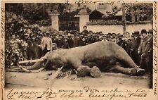 "PC, FRANCE, DEATH OF ""FRITZ"" THE GIANT ELEPHANT, VINTAGE POSTCARD (b4038)"