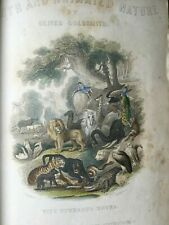 Goldsmith Earth and Animated Nature HAND PAINTED 2 Volumes
