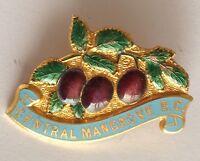 Central Mangrove Bowling Club Badge Rare Vintage (M9)
