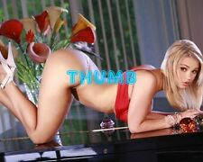 Ashlynn Brooke - 10x8 inch Photograph #041 in Satin Red Bra & Pants & Stiletto's