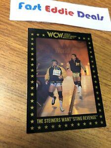1991 WCW WRESTLING CARD STEINER BROTHERS CARD 104 CHAMPIONSHIP MARKETING NWA