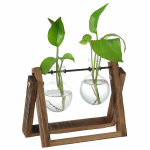 MyGift Clear Glass Planter Bulb Vases with Rustic Wood and Metal Swivel Stand