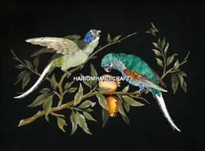 3'x2' Black Marble Coffee Table Top Beautiful Bird Inlaid Art Indoor Decor H5056