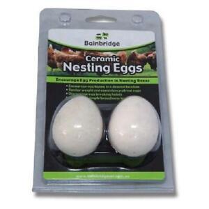 Poultry Nesting Eggs – Ceramic 2 Pack