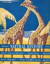 Natural History Magazine Jan 1938 GIRAFFE Cover Jungle Drugs Okapi Vintage Ads