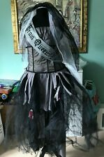 Prom Queen Halloween Costume Age 14 - Used