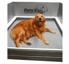 "DuraWhelp Whelping Box Extra Large 60""x48""x23"" With Floor and Rails"