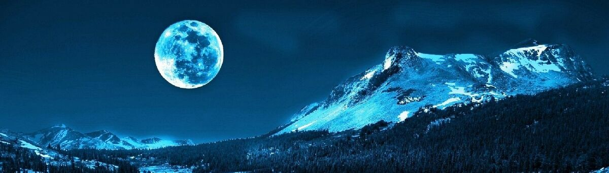 Moonlight Thrifter